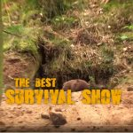 the best survival show